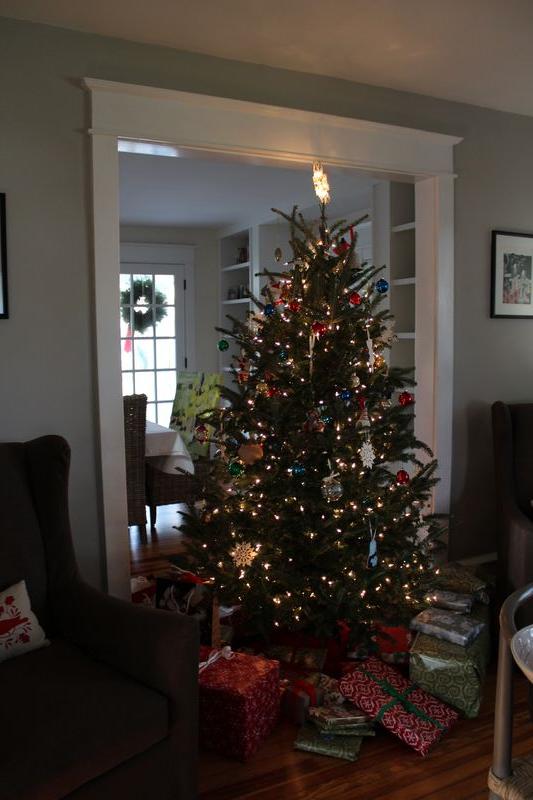Christmas 2011 022